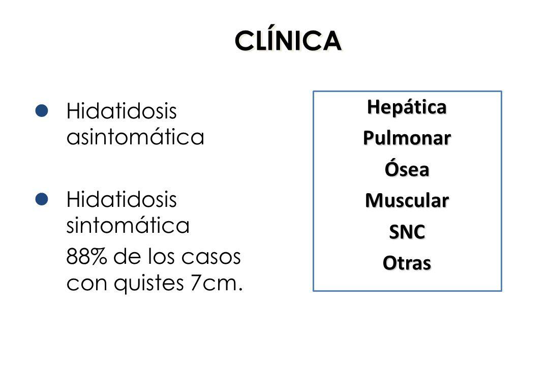 CLÍNICA Hidatidosis asintomática Hidatidosis sintomática 88% de los casos con quistes 7cm. HepáticaPulmonarÓseaMuscularSNCOtras