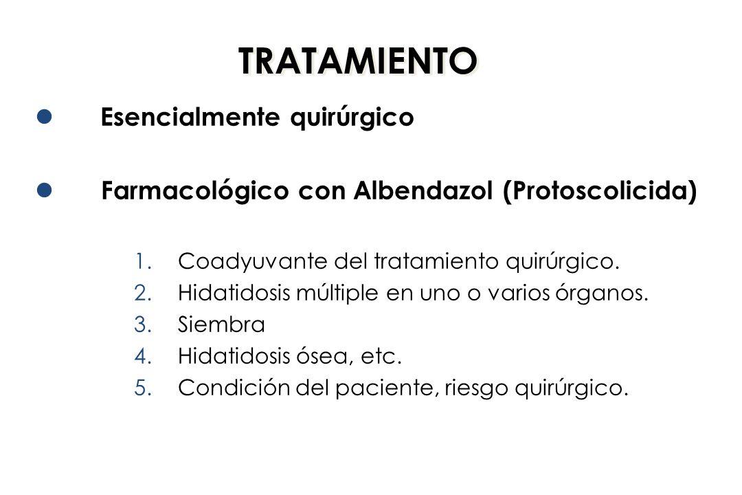 TRATAMIENTO Esencialmente quirúrgico Farmacológico con Albendazol (Protoscolicida) 1.Coadyuvante del tratamiento quirúrgico. 2.Hidatidosis múltiple en