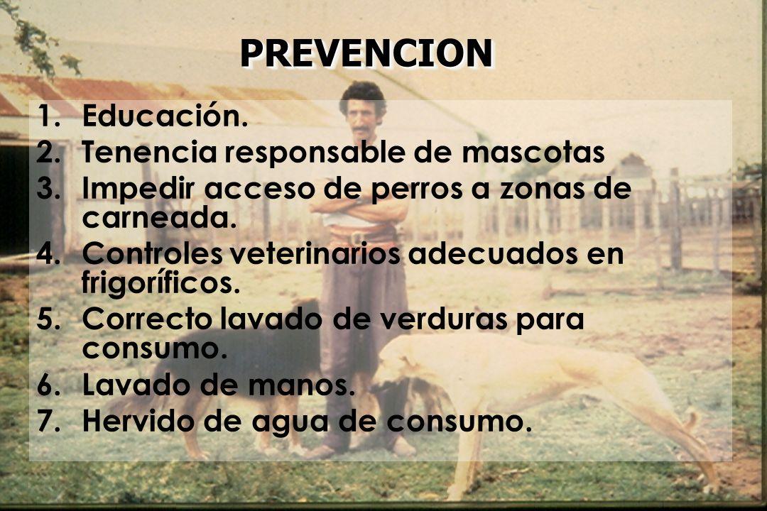PREVENCIONPREVENCION 1.Educación. 2.Tenencia responsable de mascotas 3.Impedir acceso de perros a zonas de carneada. 4.Controles veterinarios adecuado