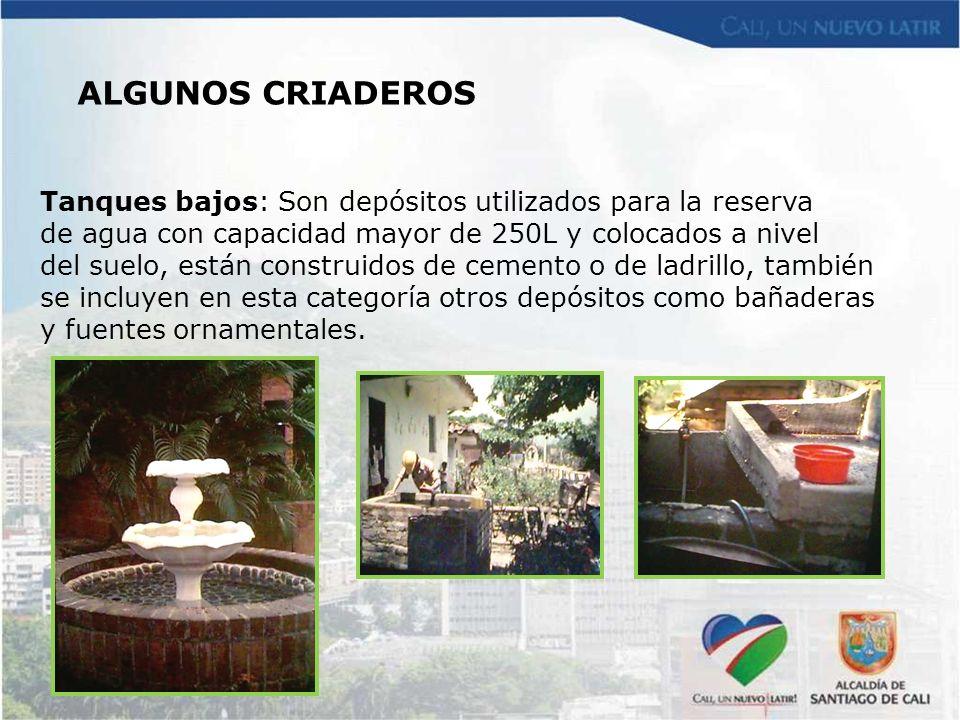Tanques bajos: Son depósitos utilizados para la reserva de agua con capacidad mayor de 250L y colocados a nivel del suelo, están construidos de cement