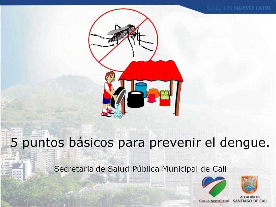 5 puntos básicos para prevenir el dengue. Secretaria de Salud Pública Municipal de Cali