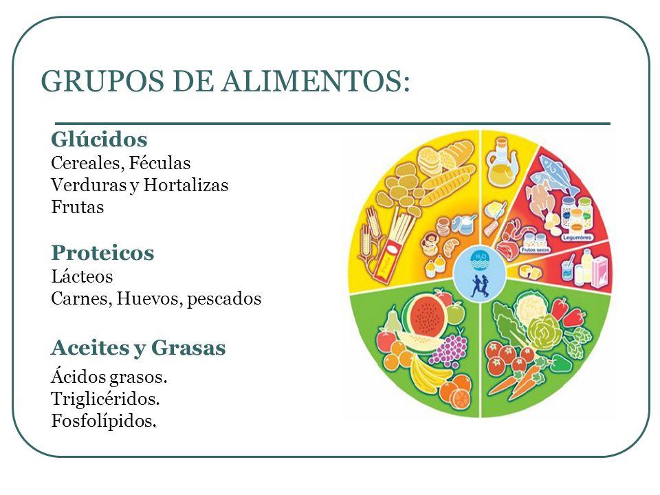 GRUPOS DE ALIMENTOS: Glúcidos Cereales, Féculas Verduras y Hortalizas Frutas Proteicos Lácteos Carnes, Huevos, pescados Aceites y Grasas Ácidos grasos