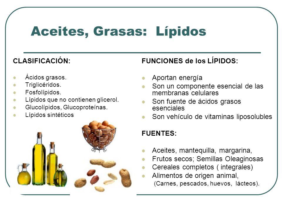 Aceites, Grasas: Lípidos CLASIFICACIÓN: Ácidos grasos. Triglicéridos. Fosfolípidos. Lípidos que no contienen glicerol. Glucolípidos, Glucoproteínas. L