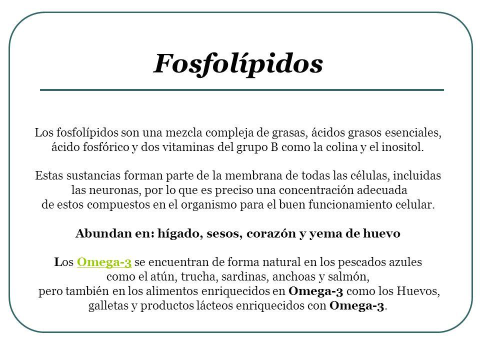 Fosfolípidos Los fosfolípidos son una mezcla compleja de grasas, ácidos grasos esenciales, ácido fosfórico y dos vitaminas del grupo B como la colina