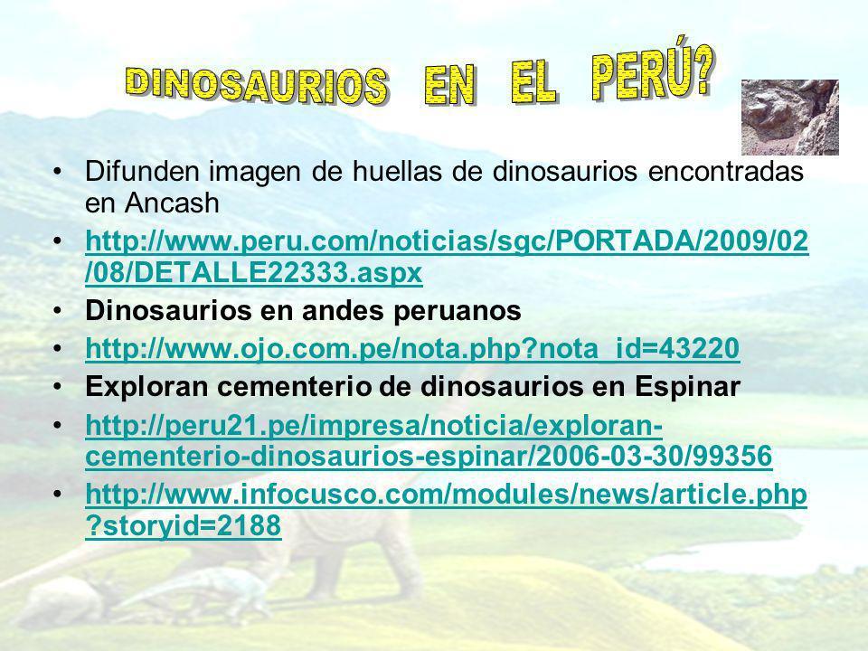 Difunden imagen de huellas de dinosaurios encontradas en Ancash http://www.peru.com/noticias/sgc/PORTADA/2009/02 /08/DETALLE22333.aspxhttp://www.peru.