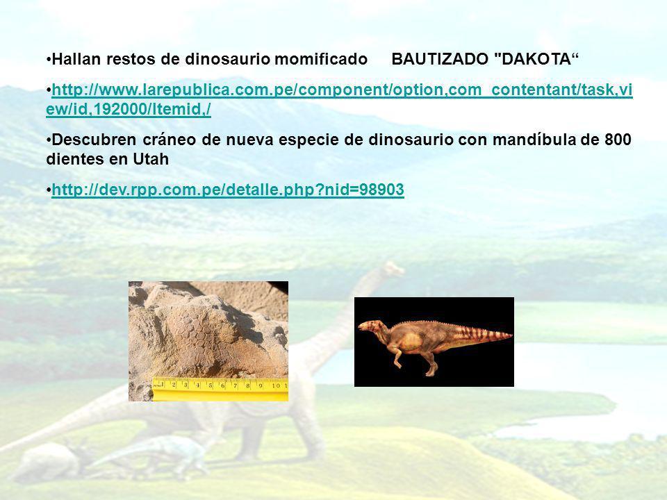 Hallan restos de dinosaurio momificado BAUTIZADO