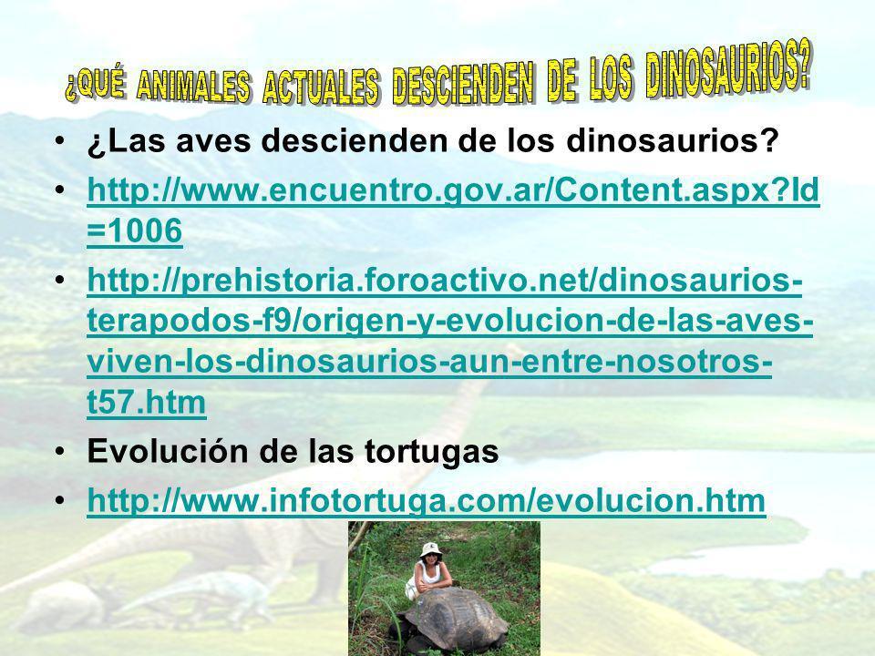 ¿Las aves descienden de los dinosaurios? http://www.encuentro.gov.ar/Content.aspx?Id =1006http://www.encuentro.gov.ar/Content.aspx?Id =1006 http://pre