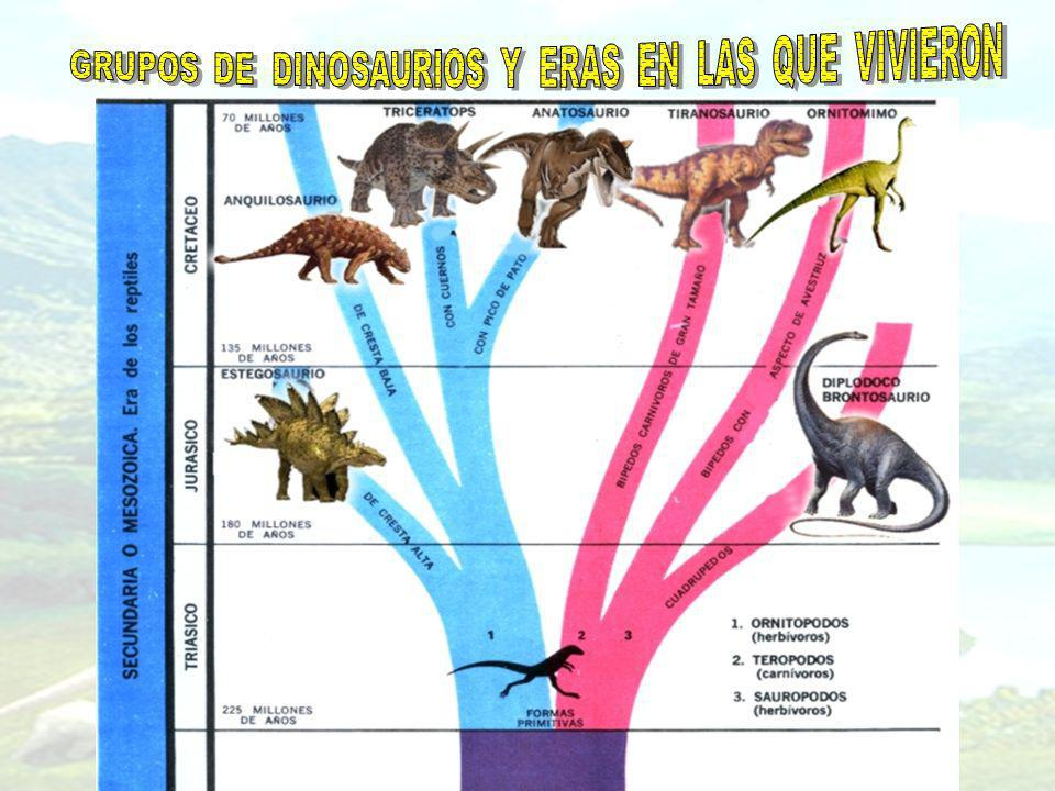 Los dinosaurios, de los que existieron millares de especies, no vivieron todos en el mismo período geológico.