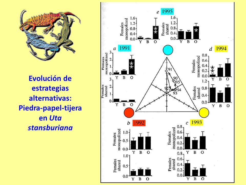 Evolución de estrategias alternativas: Piedra-papel-tijera en Uta stansburiana