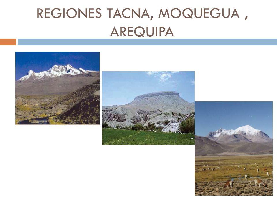 REGIONES TACNA, MOQUEGUA, AREQUIPA