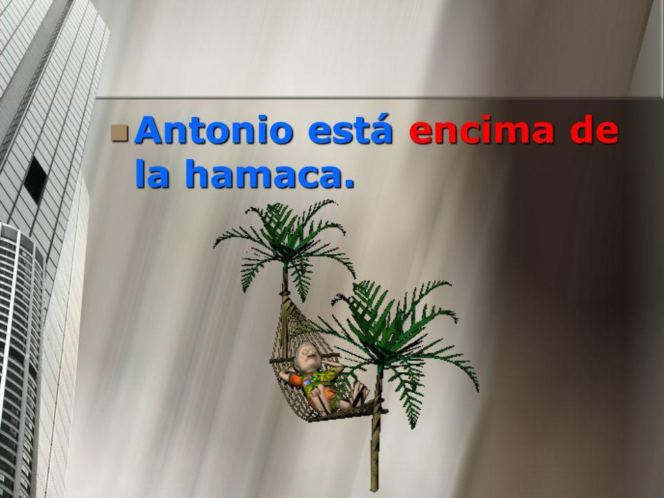 Antonio está encima de la hamaca. Antonio está encima de la hamaca.