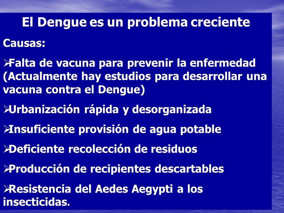 Mosquito sano Persona infectada Mosquito Infectado Persona Sanas Persona enferma con Dengue Cadena de Transmisión del Dengue