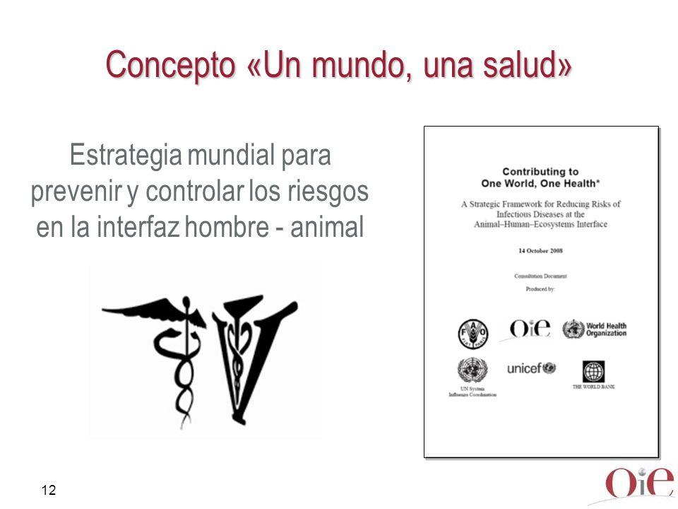 12 Concepto «Un mundo, una salud» Estrategia mundial para prevenir y controlar los riesgos en la interfaz hombre - animal