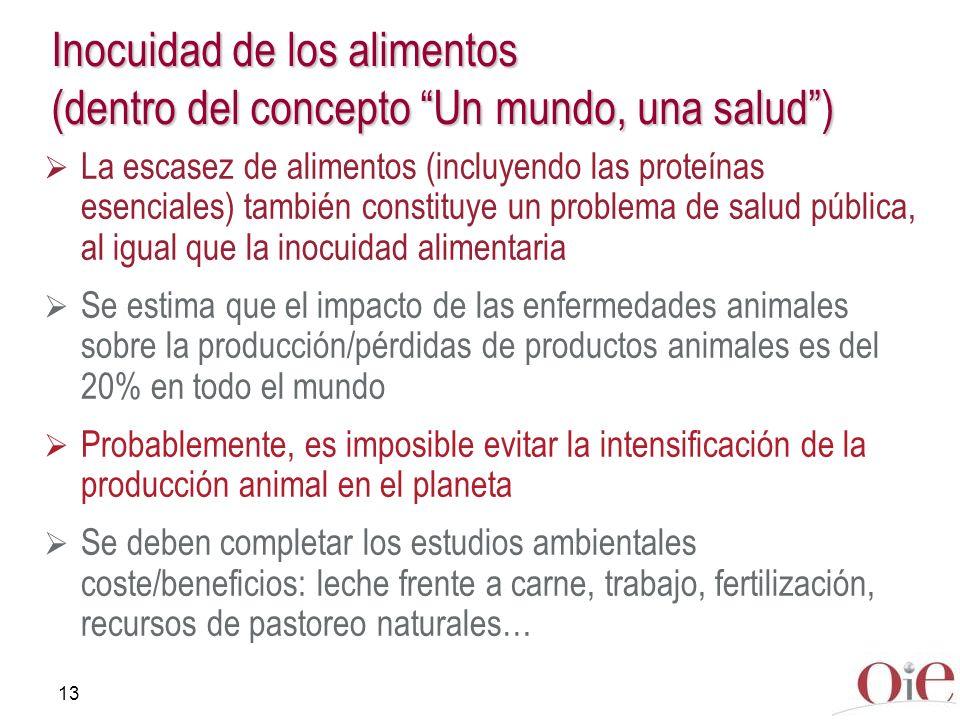 13 Inocuidad de los alimentos (dentro del concepto Un mundo, una salud) La escasez de alimentos (incluyendo las proteínas esenciales) también constitu