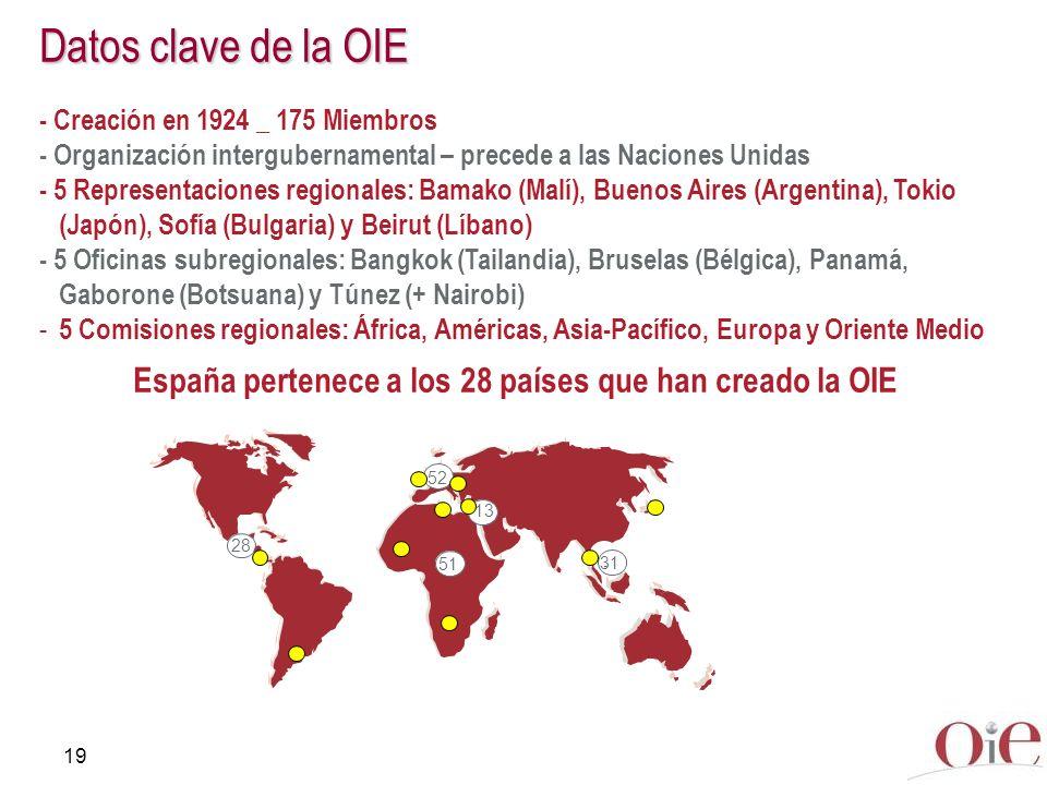 19 Datos clave de la OIE - Creación en 1924 _ 175 Miembros - Organización intergubernamental – precede a las Naciones Unidas - 5 Representaciones regi