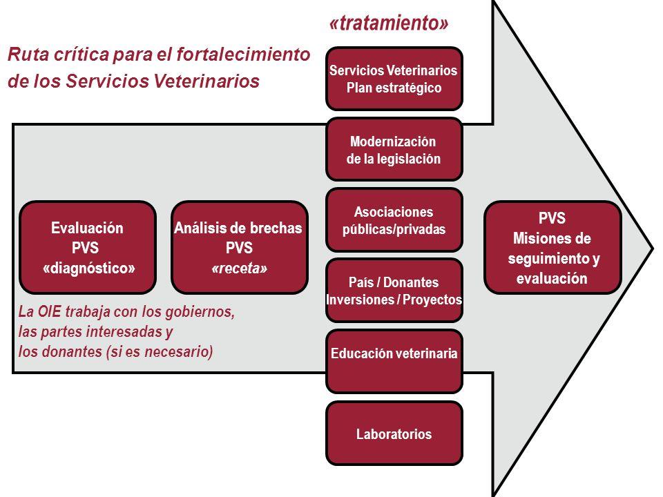 24 La OIE trabaja con los gobiernos, las partes interesadas y los donantes (si es necesario) Servicios Veterinarios Plan estratégico Modernización de