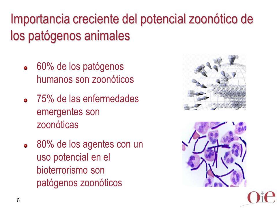 6 Importancia creciente del potencial zoonótico de los patógenos animales 60% de los patógenos humanos son zoonóticos 75% de las enfermedades emergent