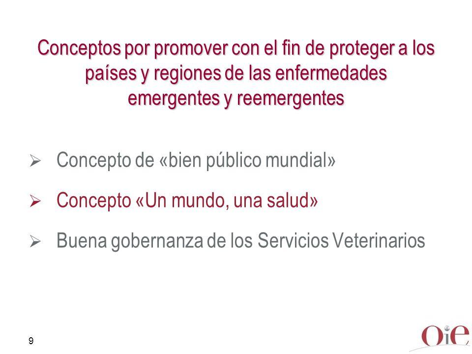 9 Conceptos por promover con el fin de proteger a los países y regiones de las enfermedades emergentes y reemergentes Concepto de «bien público mundia