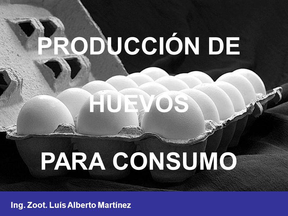 PRODUCCIÓN DE HUEVOS PARA CONSUMO Ing. Zoot. Luís Alberto Martínez