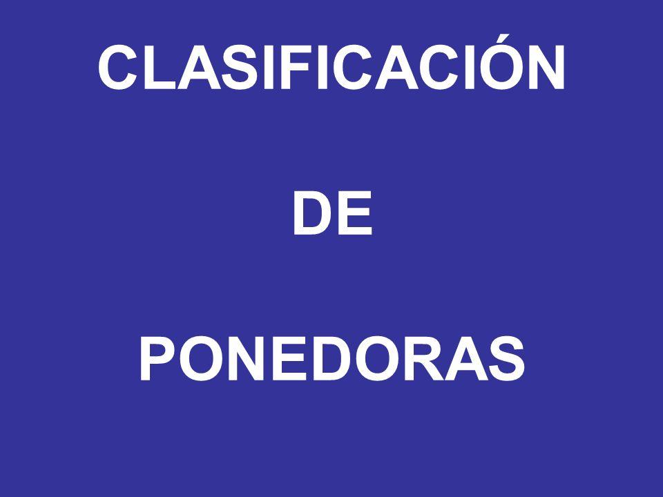 CLASIFICACIÓN DE PONEDORAS