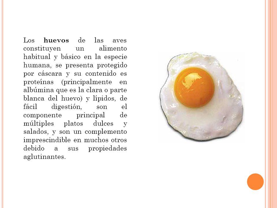 Los huevos de las aves constituyen un alimento habitual y básico en la especie humana, se presenta protegido por cáscara y su contenido es proteínas (