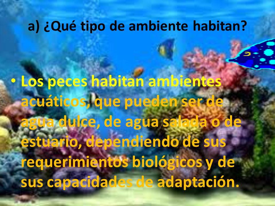 a) ¿Qué tipo de ambiente habitan? Los peces habitan ambientes acuáticos, que pueden ser de agua dulce, de agua salada o de estuario, dependiendo de su