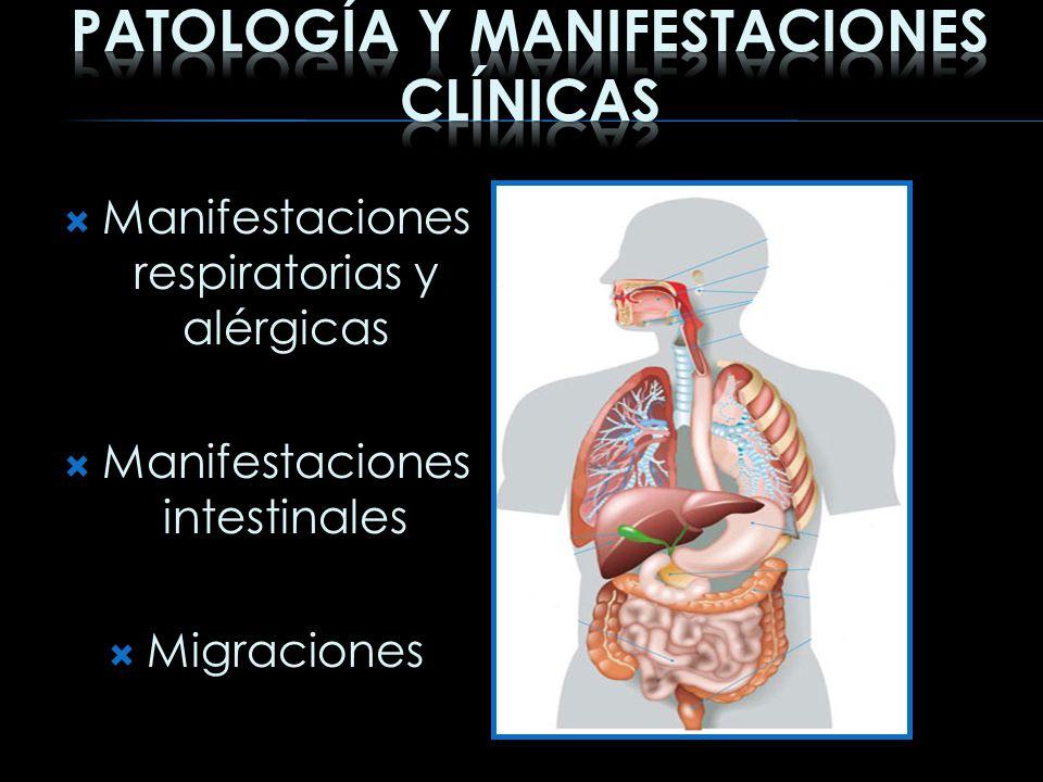 Manifestaciones respiratorias y alérgicas Manifestaciones intestinales Migraciones