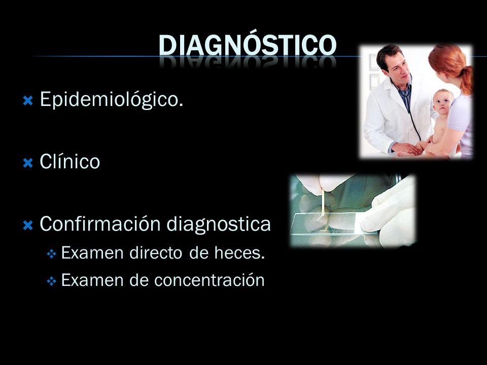 Epidemiológico. Clínico Confirmación diagnostica Examen directo de heces. Examen de concentración