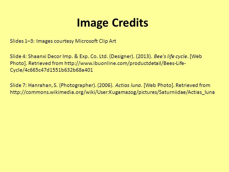 Image Credits Slides 1–3: Images courtesy Microsoft Clip Art Slide 4: Shaanxi Decor Imp. & Exp. Co. Ltd. (Designer). (2013). Bee's life cycle. [Web Ph