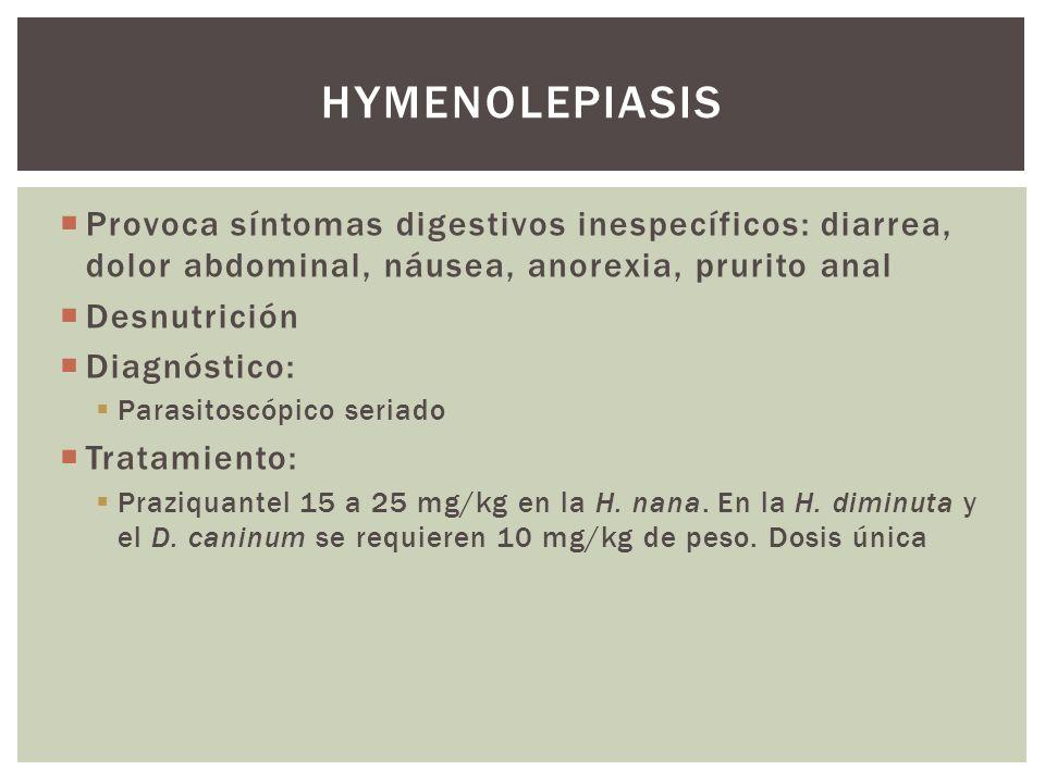 Provoca síntomas digestivos inespecíficos: diarrea, dolor abdominal, náusea, anorexia, prurito anal Desnutrición Diagnóstico: Parasitoscópico seriado