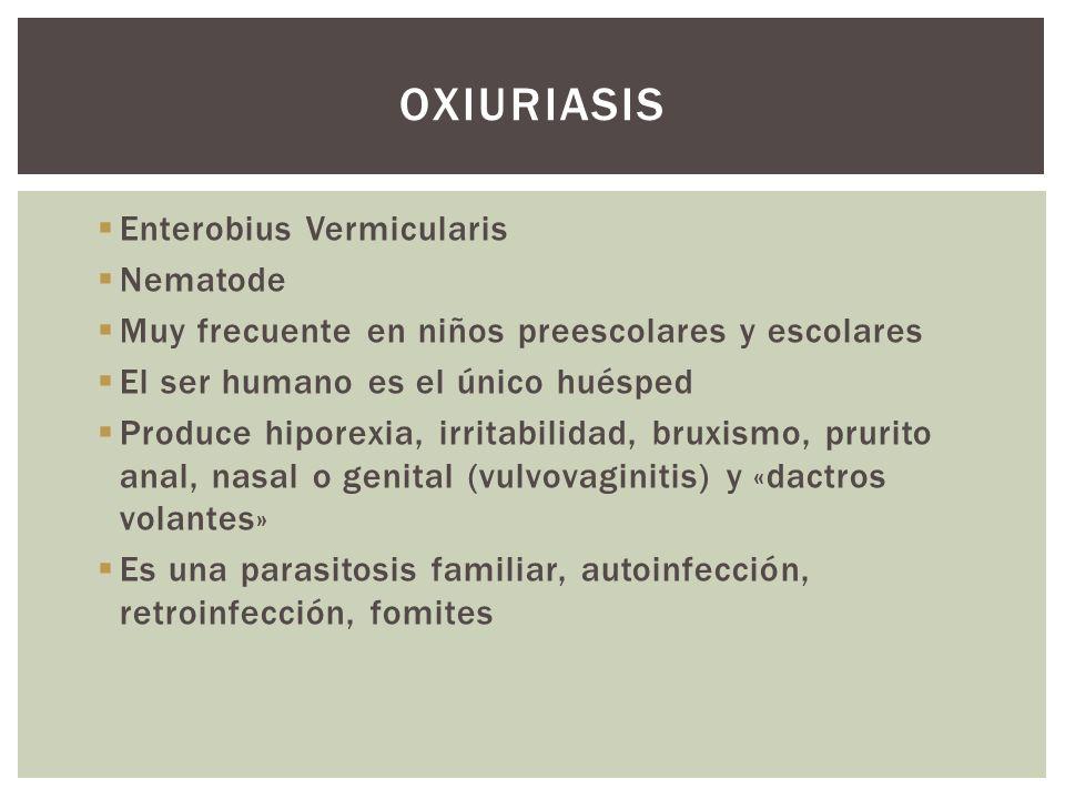 Enterobius Vermicularis Nematode Muy frecuente en niños preescolares y escolares El ser humano es el único huésped Produce hiporexia, irritabilidad, b
