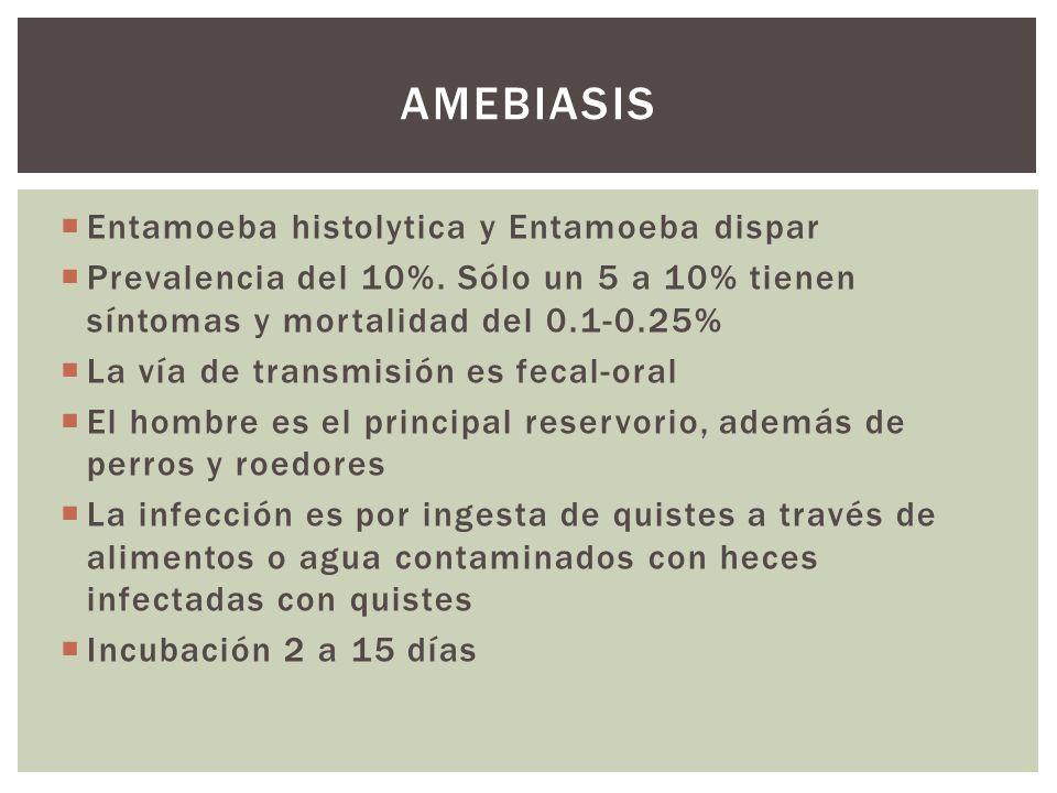 Entamoeba histolytica y Entamoeba dispar Prevalencia del 10%. Sólo un 5 a 10% tienen síntomas y mortalidad del 0.1-0.25% La vía de transmisión es feca