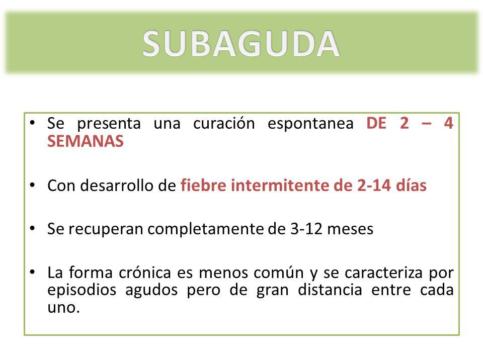 Se presenta una curación espontanea DE 2 – 4 SEMANAS Con desarrollo de fiebre intermitente de 2-14 días Se recuperan completamente de 3-12 meses La fo