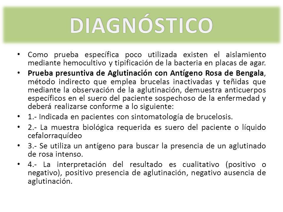 Como prueba específica poco utilizada existen el aislamiento mediante hemocultivo y tipificación de la bacteria en placas de agar. Prueba presuntiva d