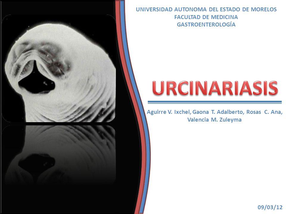 UNIVERSIDAD AUTONOMA DEL ESTADO DE MORELOS FACULTAD DE MEDICINA GASTROENTEROLOGÍA Aguirre V. Ixchel, Gaona T. Adalberto, Rosas C. Ana, Valencia M. Zul