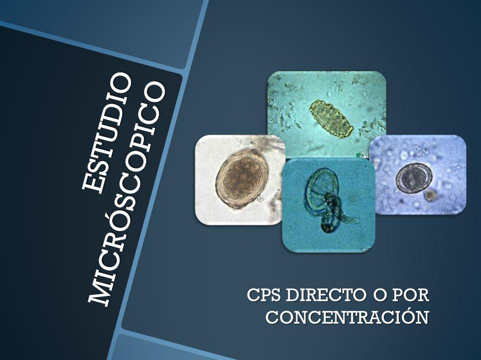ESTUDIO MICRÓSCOPICO CPS DIRECTO O POR CONCENTRACIÓN