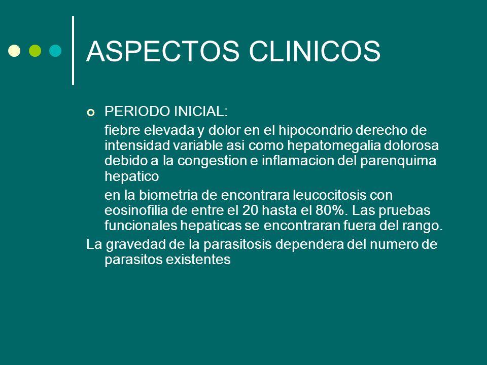ASPECTOS CLINICOS PERIODO INICIAL: fiebre elevada y dolor en el hipocondrio derecho de intensidad variable asi como hepatomegalia dolorosa debido a la