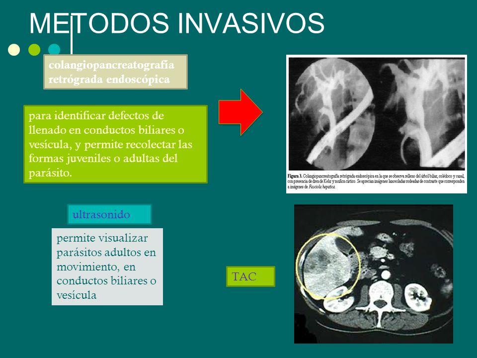 METODOS INVASIVOS permite visualizar parásitos adultos en movimiento, en conductos biliares o vesícula colangiopancreatografía retrógrada endoscópica