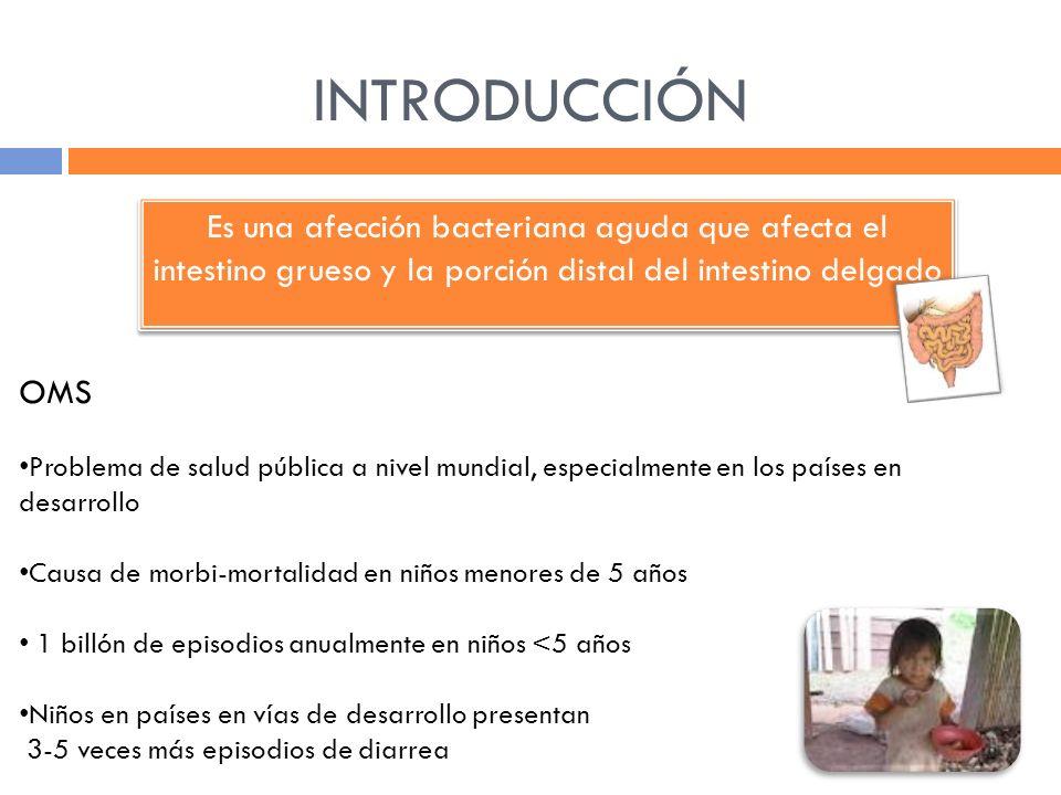 INTRODUCCIÓN Es una afección bacteriana aguda que afecta el intestino grueso y la porción distal del intestino delgado OMS Problema de salud pública a