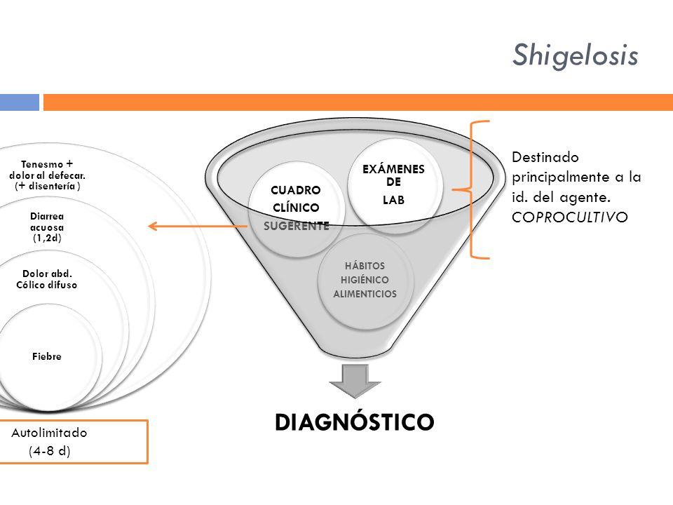 Shigelosis DIAGNÓSTICO HÁBITOS HIGIÉNICO ALIMENTICIOS CUADRO CLÍNICO SUGERENTE EXÁMENE S DE LAB Tenesmo + dolor al defecar. (+ disentería ) Diarrea ac