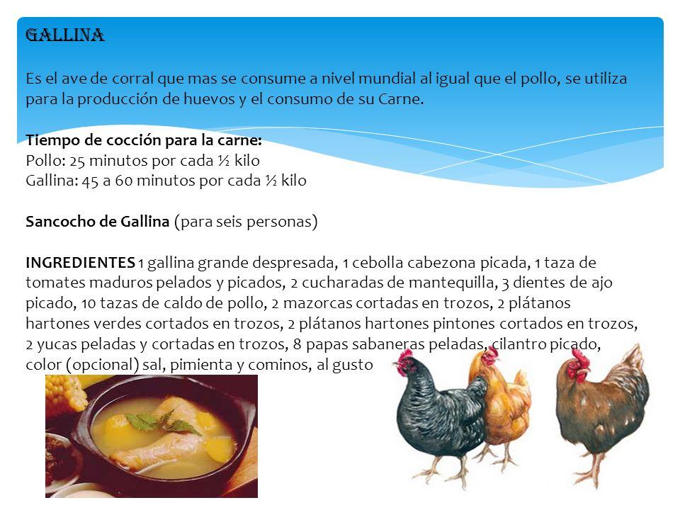 GALLINA Es el ave de corral que mas se consume a nivel mundial al igual que el pollo, se utiliza para la producción de huevos y el consumo de su Carne