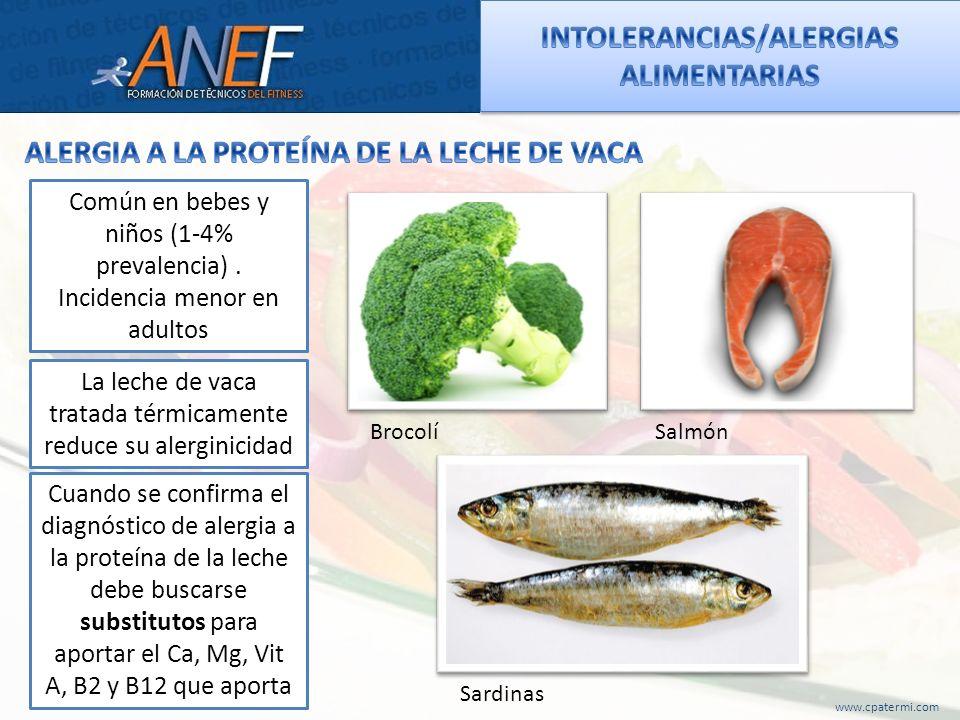 www.cpatermi.com Común en bebes y niños (1-4% prevalencia). Incidencia menor en adultos La leche de vaca tratada térmicamente reduce su alerginicidad