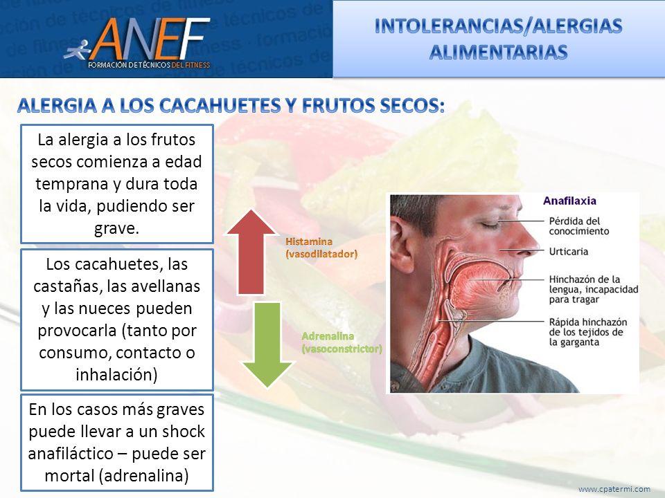 www.cpatermi.com La alergia a los frutos secos comienza a edad temprana y dura toda la vida, pudiendo ser grave. Los cacahuetes, las castañas, las ave