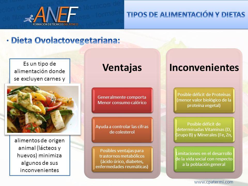 Ventajas Generalmente comporta Menor consumo calórico Ayuda a controlar las cifras de colesterol Posibles ventajas para trastornos metabólicos (ácido