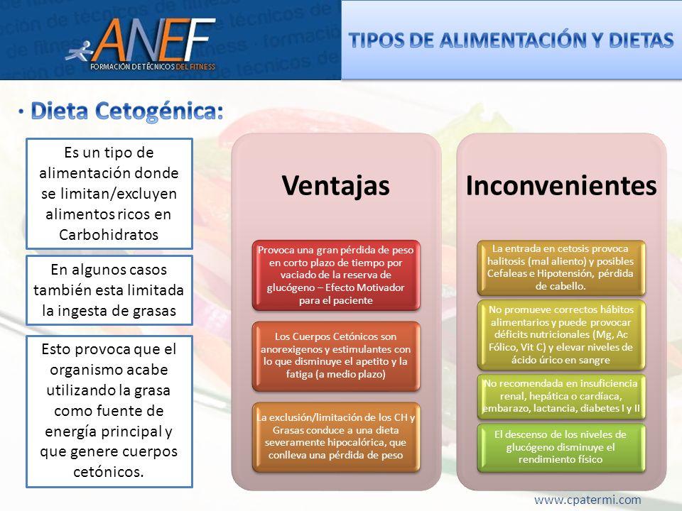 www.cpatermi.com Ventajas Provoca una gran pérdida de peso en corto plazo de tiempo por vaciado de la reserva de glucógeno – Efecto Motivador para el