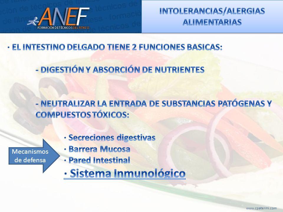 www.cpatermi.com Mecanismos de defensa