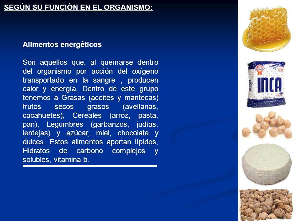 SEGÚN SU FUNCIÓN EN EL ORGANISMO: Alimentos energéticos Son aquellos que, al quemarse dentro del organismo por acción del oxígeno transportado en la s