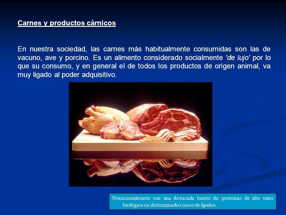 Carnes y productos cárnicos En nuestra sociedad, las carnes más habitualmente consumidas son las de vacuno, ave y porcino. Es un alimento considerado