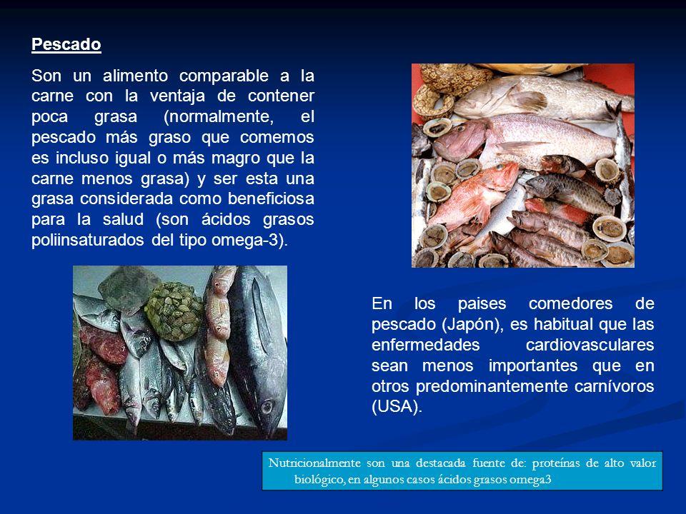 Pescado Son un alimento comparable a la carne con la ventaja de contener poca grasa (normalmente, el pescado más graso que comemos es incluso igual o