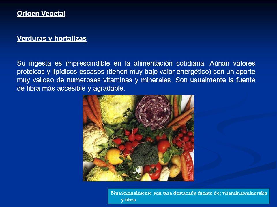 Origen Vegetal Verduras y hortalizas Su ingesta es imprescindible en la alimentación cotidiana. Aúnan valores proteicos y lipídicos escasos (tienen mu